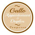 Gallo Appartement Tongeren